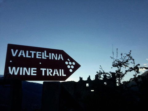 Valtellina Wine Trail 2018 - Le classifiche