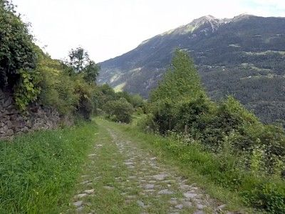 La Grosina downhill - Five Crazy Down